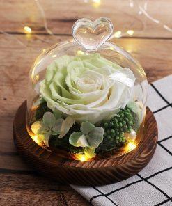 Cloche Rose Éternelle Led